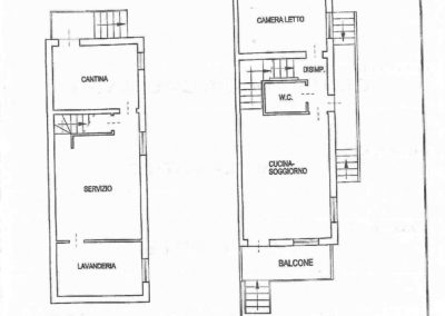 Piantine casa Martorano CAV-002